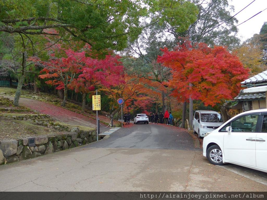 D03-250-奈良公園.jpg