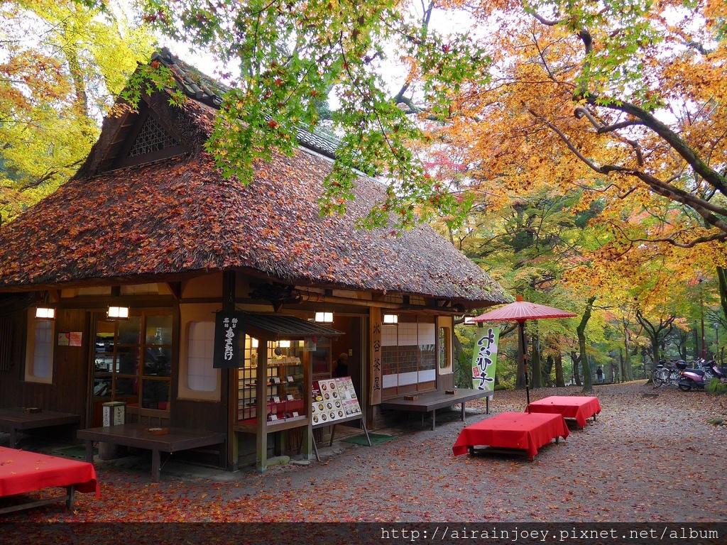 D03-262-奈良公園.jpg