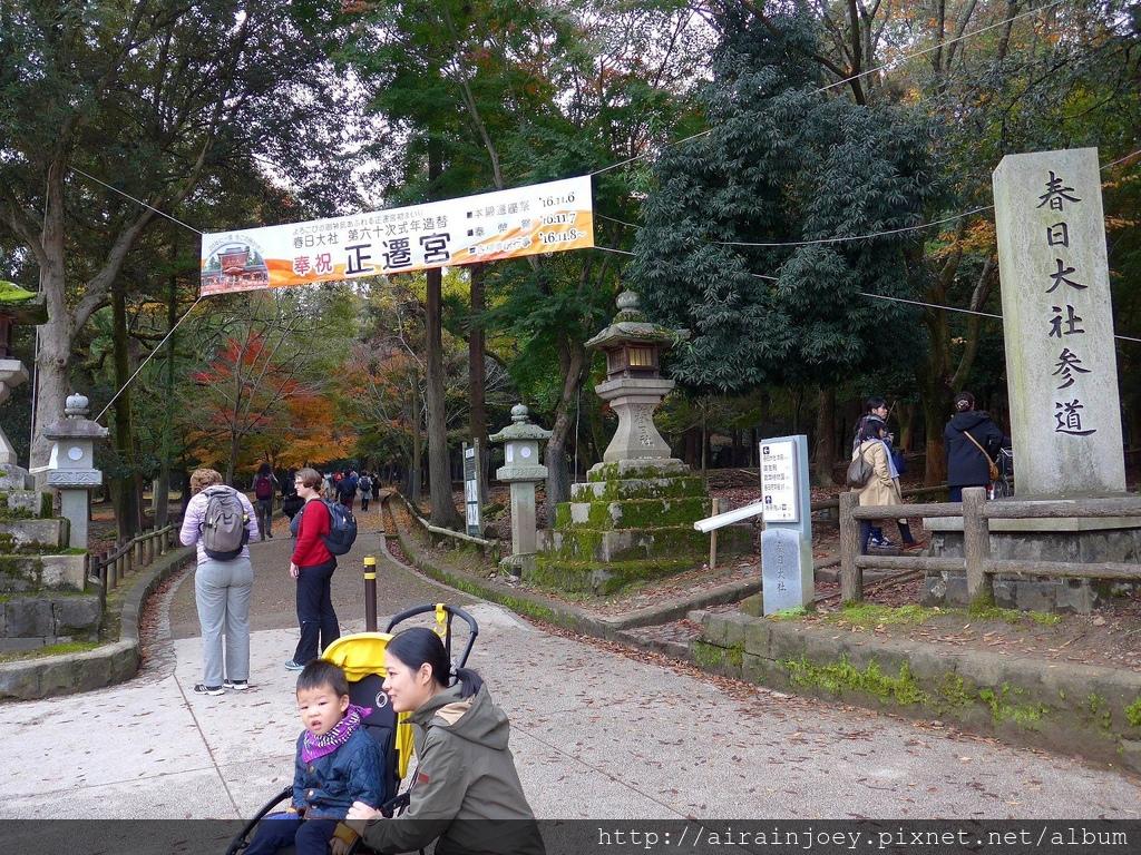 D03-328-奈良公園.jpg