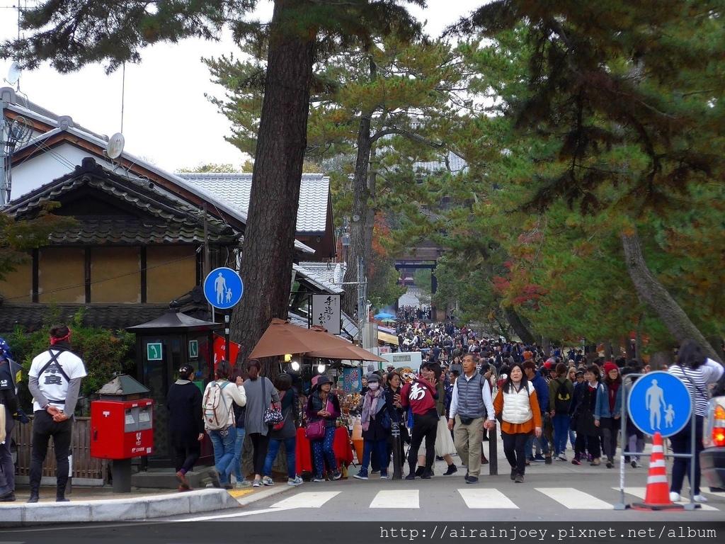 D03-331-奈良公園.jpg