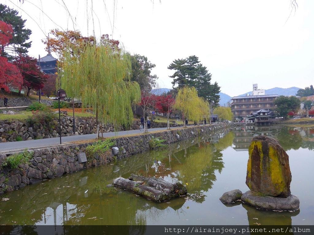 D03-357-興福寺.jpg