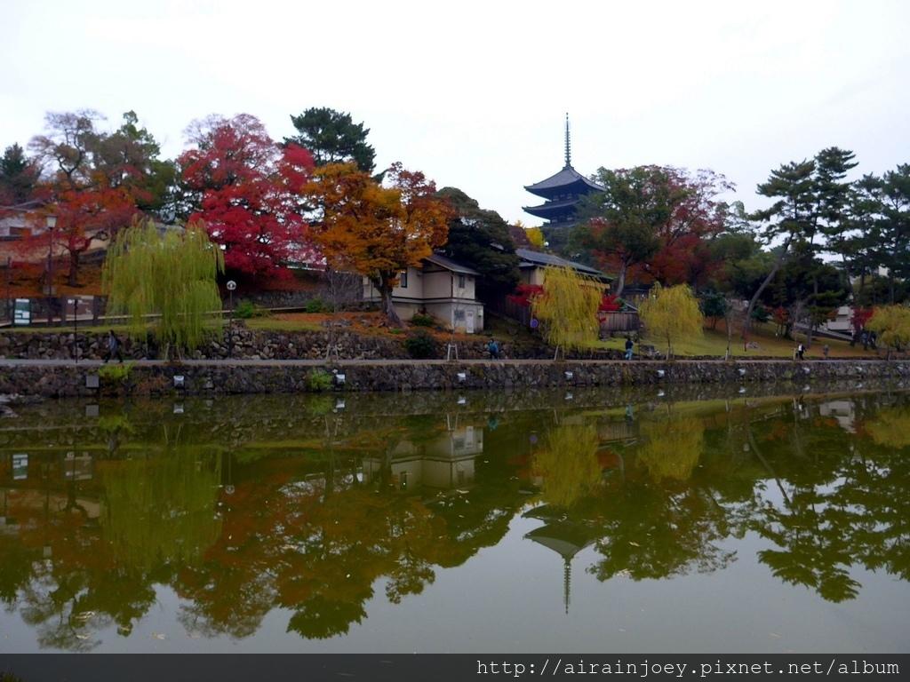 D03-359-興福寺.jpg