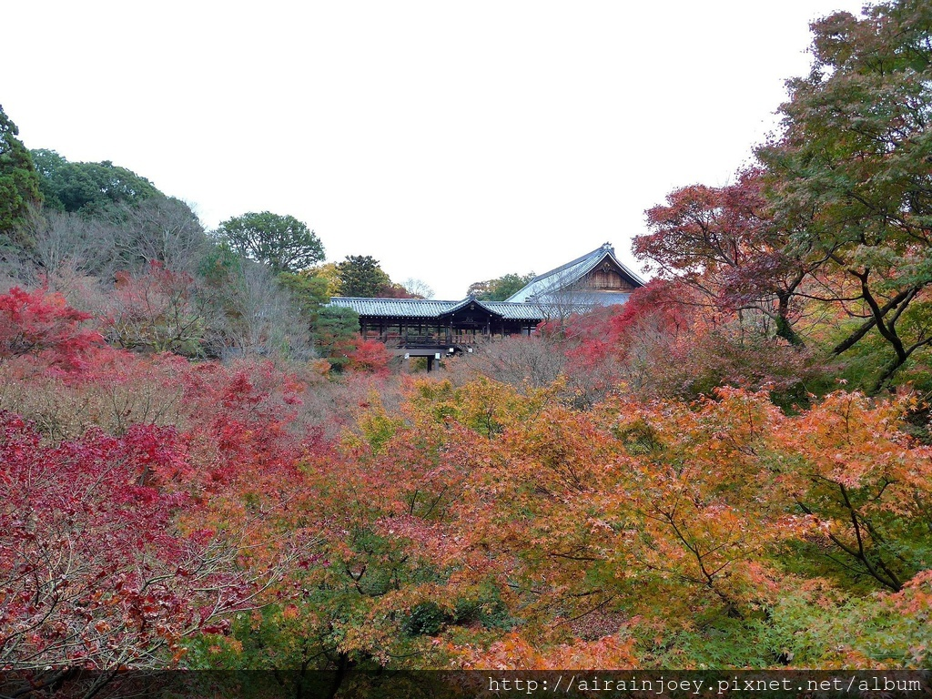 D06-008-東福寺.jpg