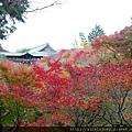 D06-007-東福寺.jpg