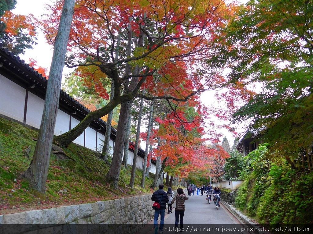 D06-010-東福寺.jpg