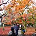 D06-027-東福寺.jpg