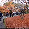 D06-030-東福寺.jpg