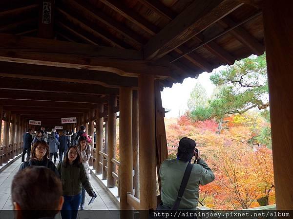 D06-059-東福寺.jpg