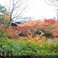 D06-049-東福寺.jpg
