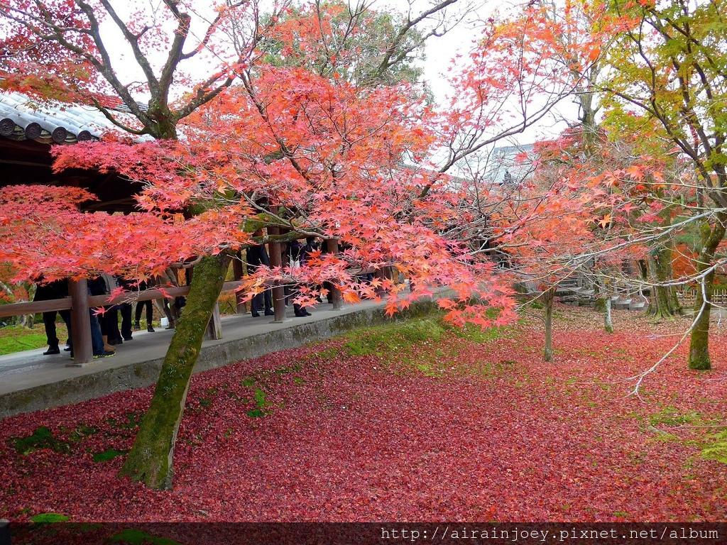 D06-053-東福寺.jpg