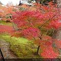 D06-079-東福寺.jpg