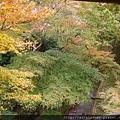 D06-130-東福寺.jpg