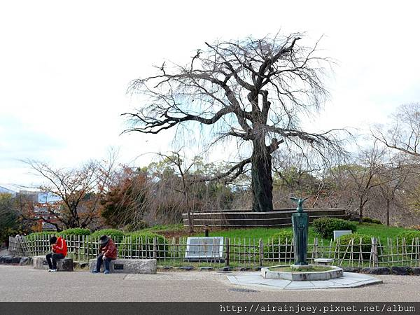 D06-273-圓山公園.jpg