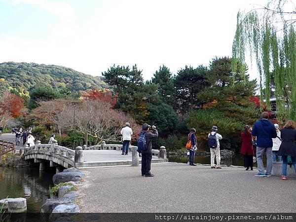 D06-272-圓山公園.jpg