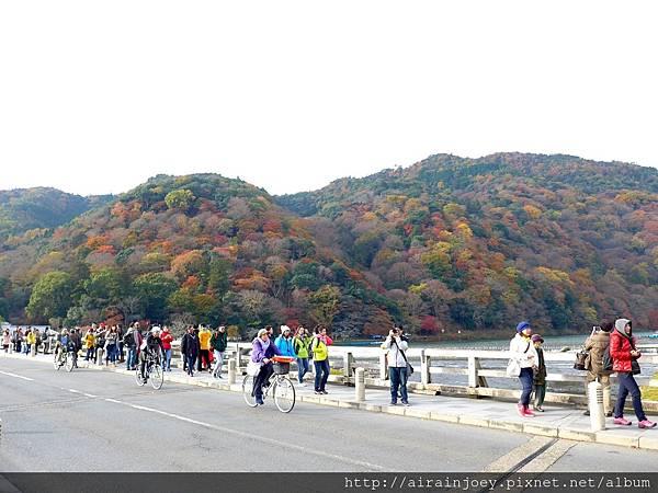 D07-021-渡月橋.jpg