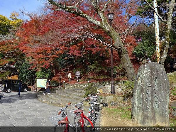 D07-101-龜山公園.jpg