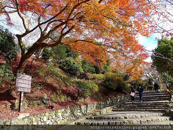 D07-103-龜山公園.jpg
