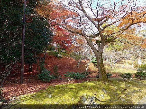 D07-107-龜山公園.jpg