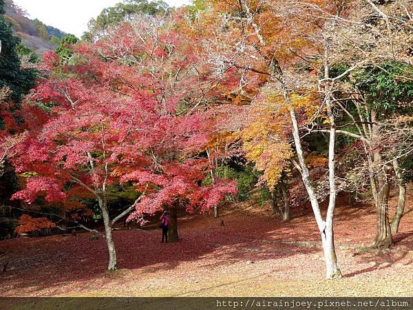 D07-112-龜山公園.jpg