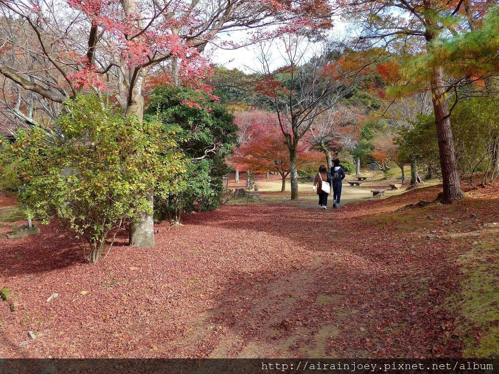 D07-110-龜山公園.jpg