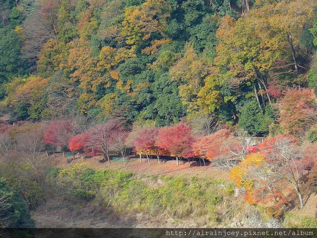 D07-122-龜山公園.jpg