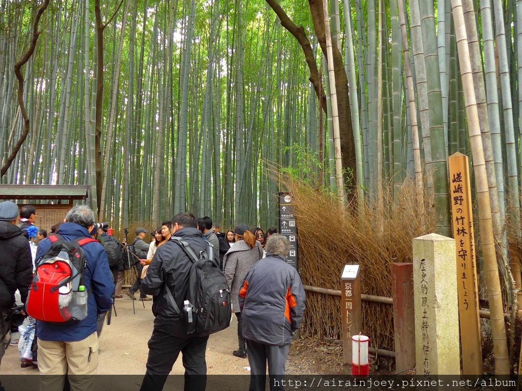 D07-133-嵐山竹林.jpg
