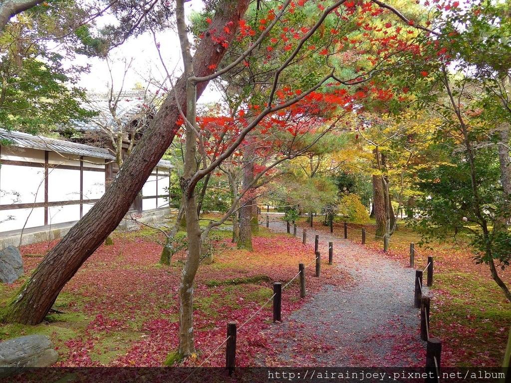 D07-328-清涼寺.jpg