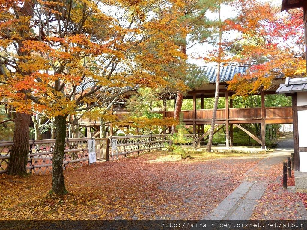 D07-330-清涼寺.jpg