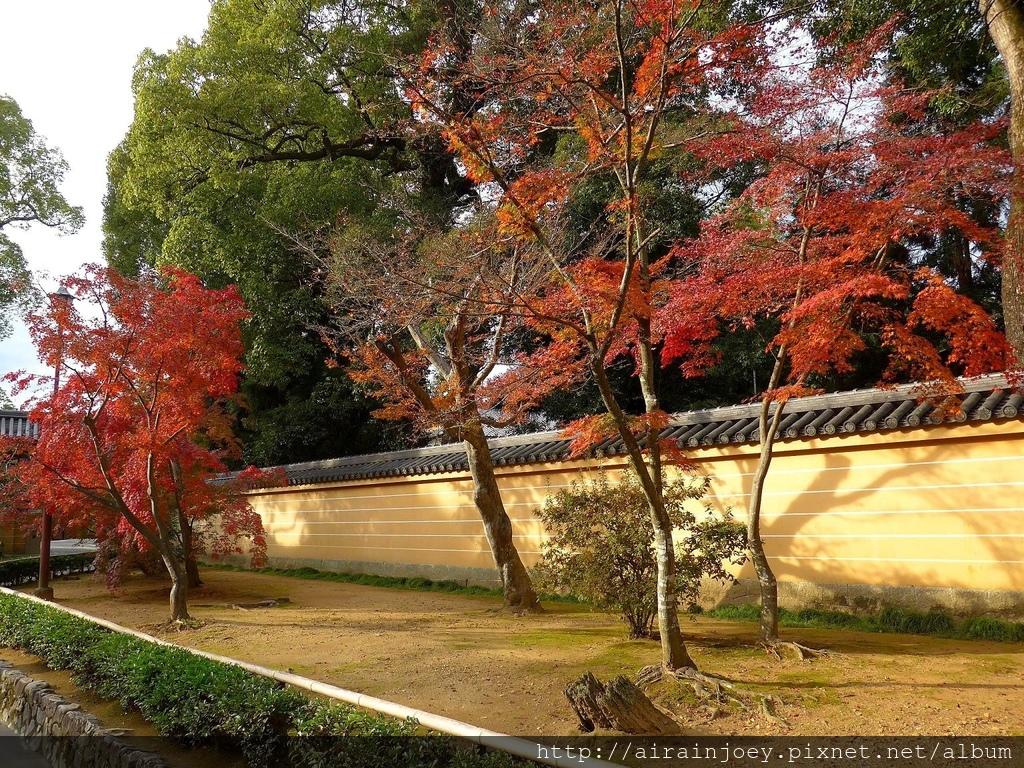 D08-299-金閣寺.jpg