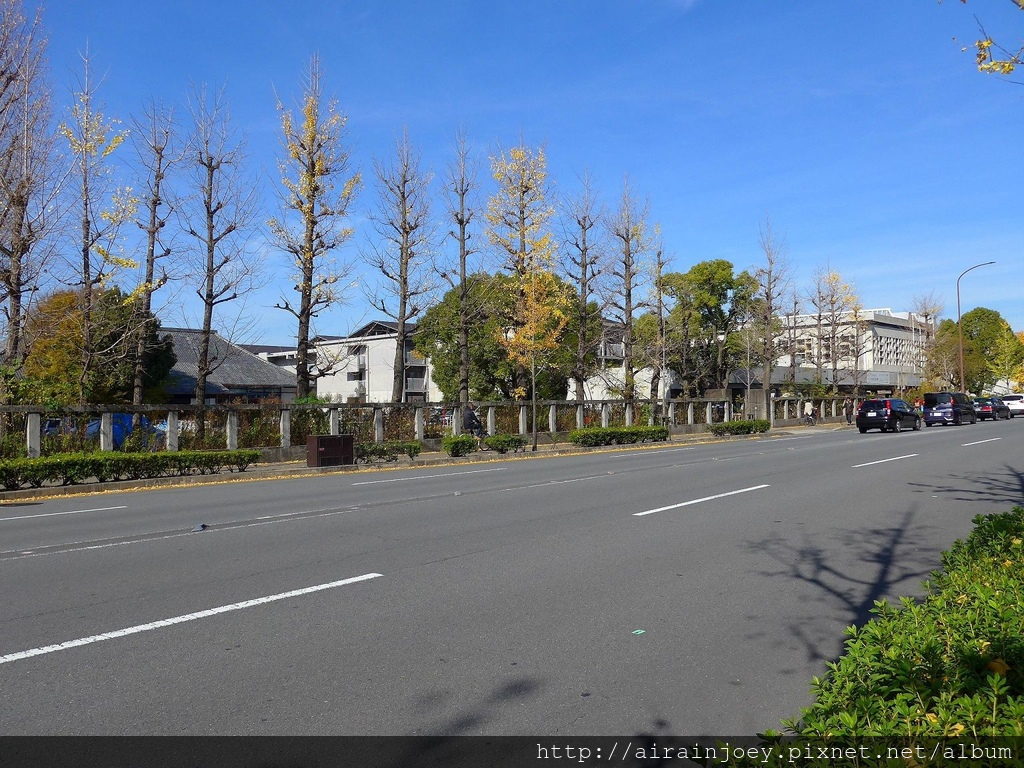 D08-241-京都大學西部食堂.jpg