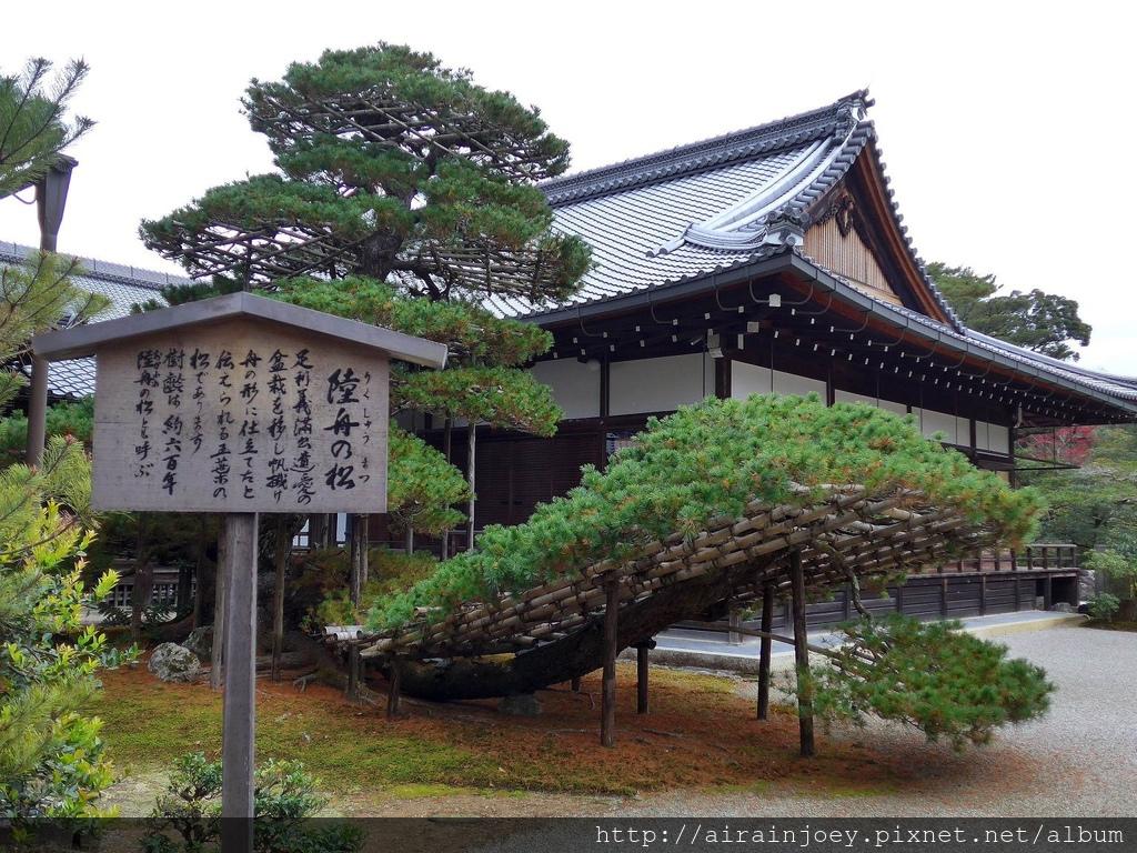 D08-346-金閣寺.jpg