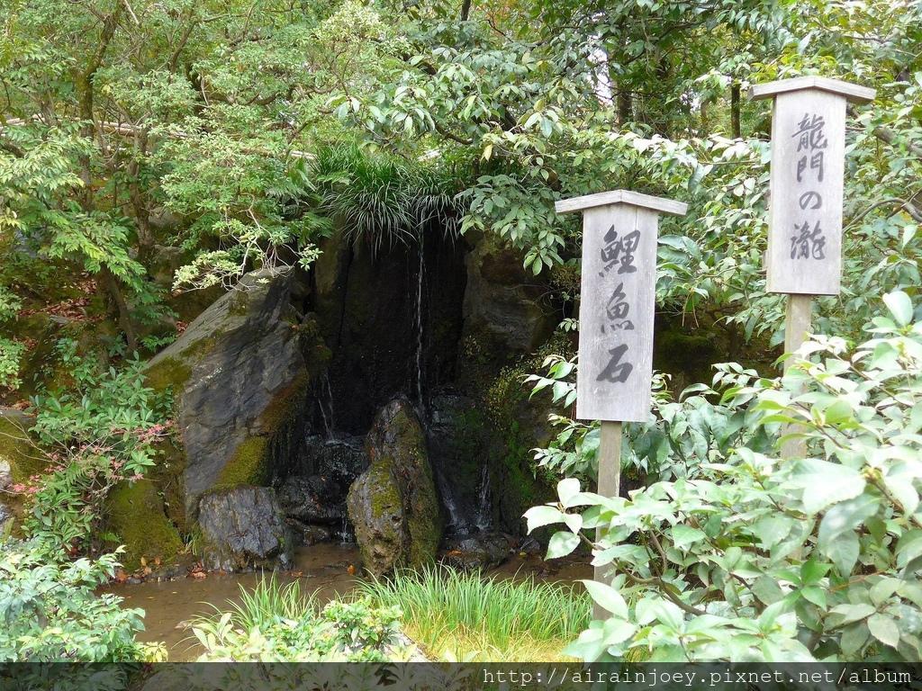 D08-363-金閣寺.jpg