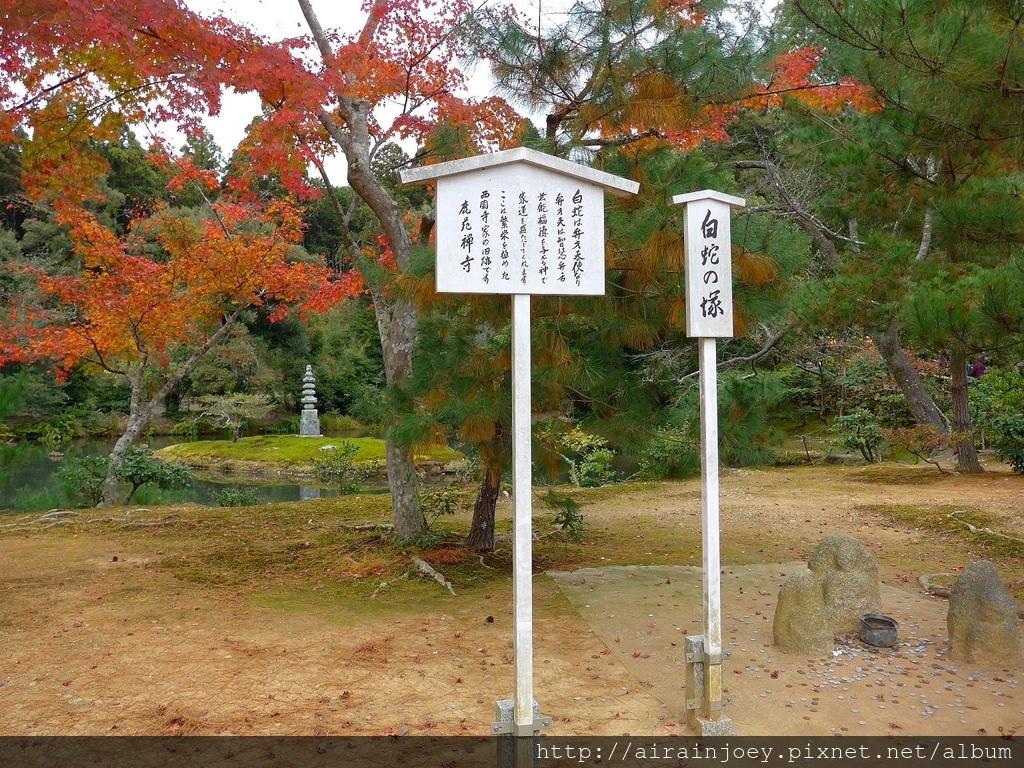 D08-366-金閣寺.jpg