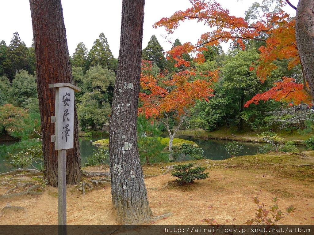 D08-365-金閣寺.jpg
