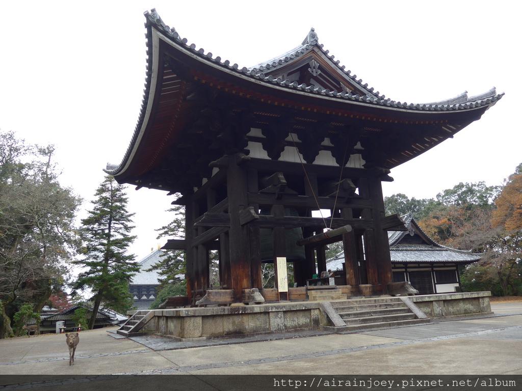 D03-167-東大寺.JPG