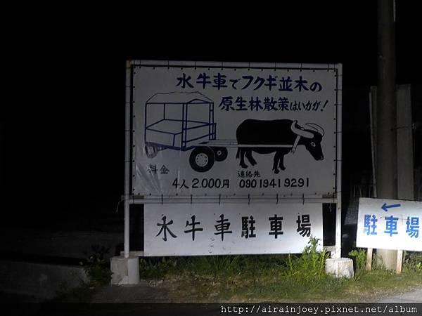 D03-001 備瀨福木林道.jpg