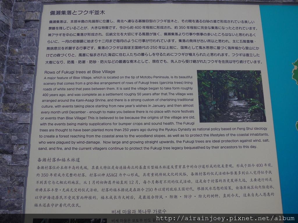 D03-041 備瀨崎.jpg