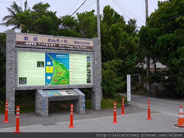 D03-053 備瀨福木林道.jpg