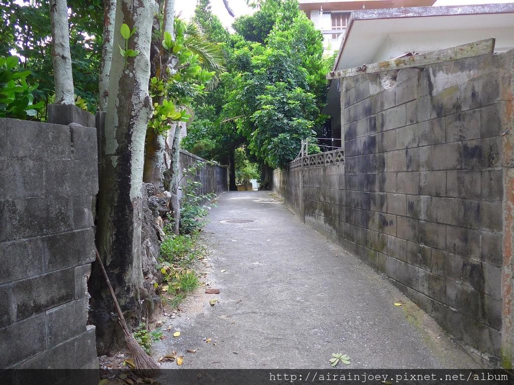D03-067 備瀨福木林道.jpg