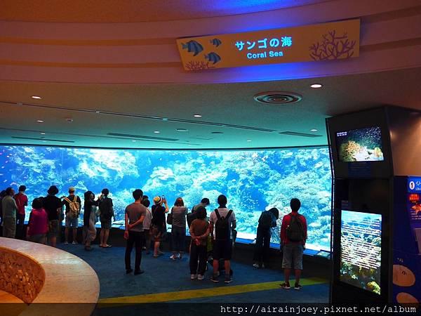 D03-189 美麗海水族館.jpg