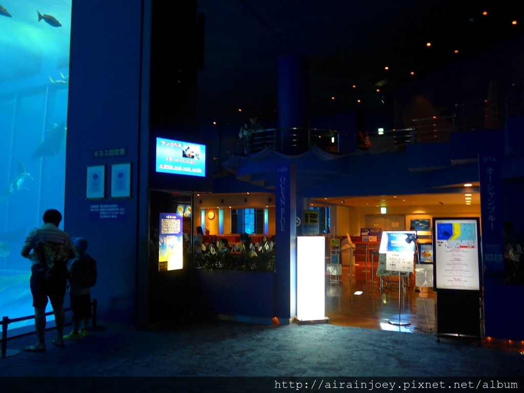 D03-212 美麗海水族館.jpg