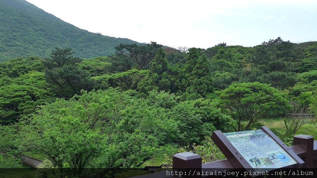 台北市-陽明山-大屯自然公園13.jpg