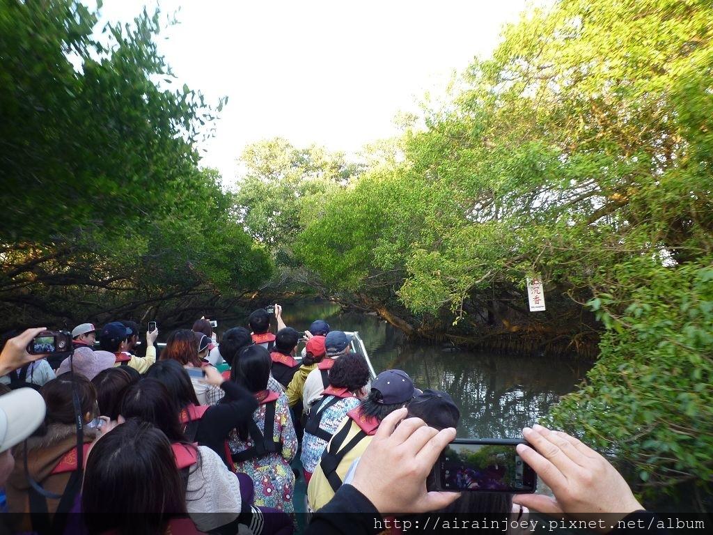 台南-四草綠色隧道06.jpg