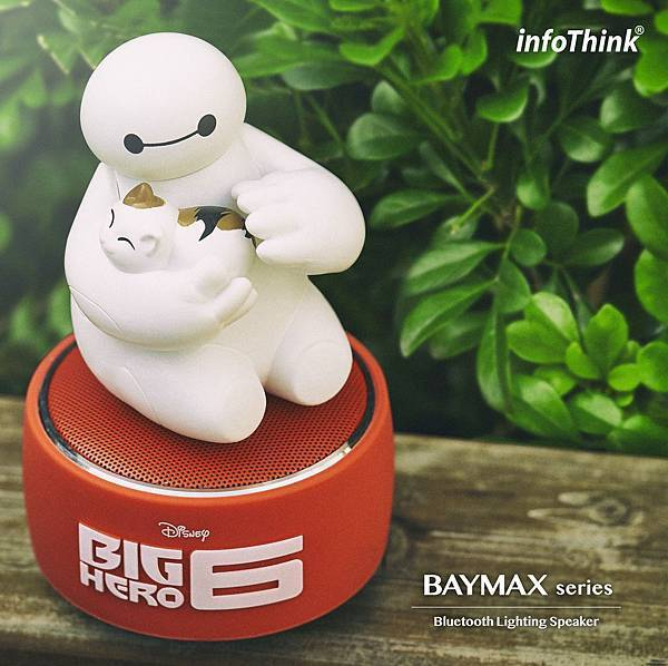 Baymax_Speaker_outside1-crop.jpg