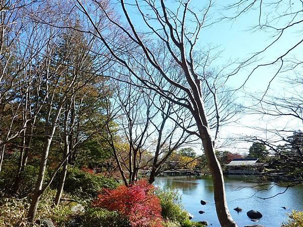 nEO_IMG_昭和紀念公園.jpg