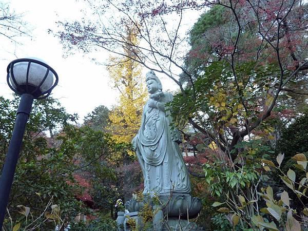nEO_IMG_高幡不動尊.jpg