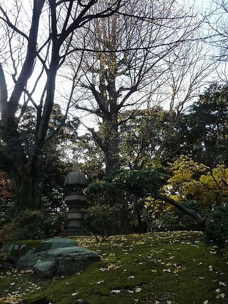 nEO_IMG_舊古河庭園 01.jpg