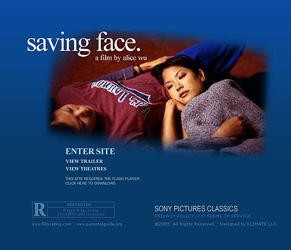 Saving Face.jpg