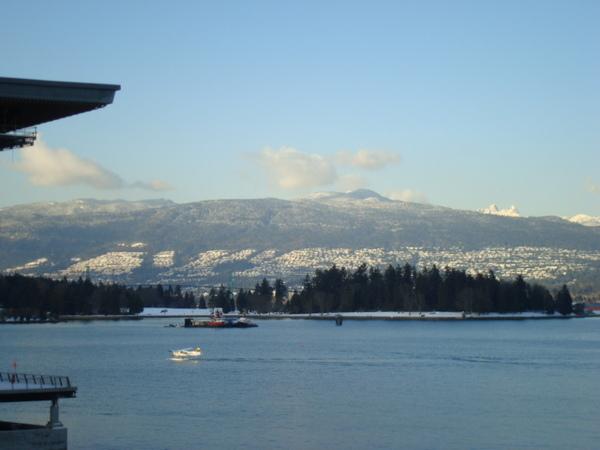 winter 08 086.jpg