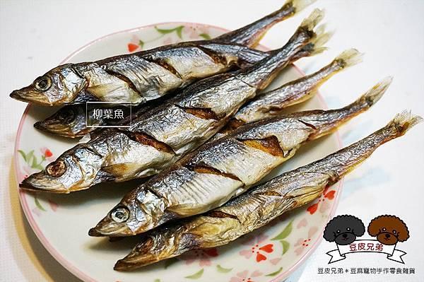 魚兒系列--柳葉魚